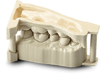 DAYLIGHT DENTAL MODEL (1Kg)